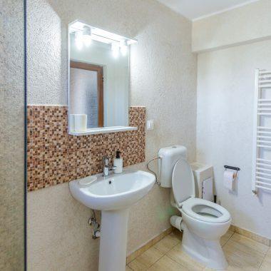 BlackSeaView - Camere - Apartament - baie cu chiuvetă și toaletă